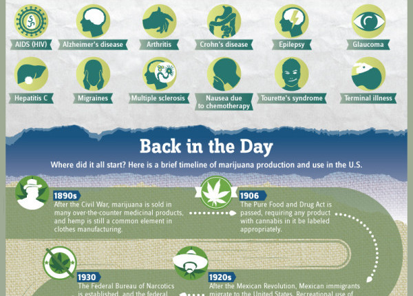 a history of marijuana use and research Although there is no medication that has yet been shown to be a clearly effective treatment of marijuana-use disorders, research shows that antidepressant medications like nefazodone and fluoxetine may help some individuals manage marijuana withdrawal and to avoid relapse, respectively oral thc (dronabinol) may also help alleviate symptoms of .