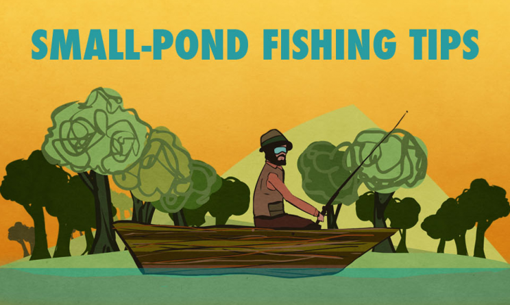 Small pond fishing tips infographic alltop viral for Garden pond tips