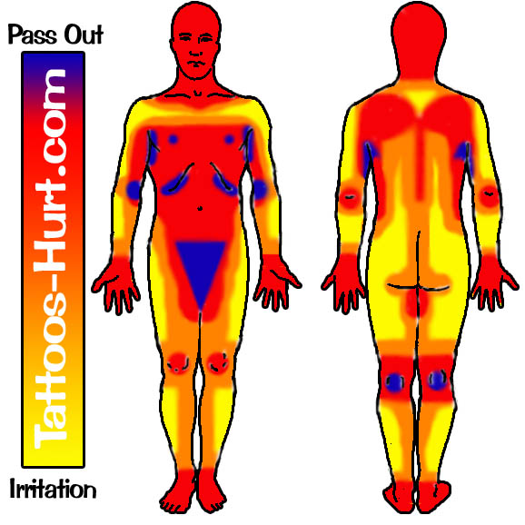 human body diagram tattoo tattoo body pain diagram wiring diagram  tattoo body pain diagram wiring diagram
