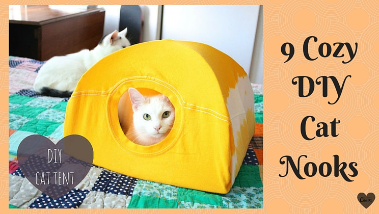 9 DIY cat dwellings to scratch the itch for cozy & 9 DIY cat dwellings to scratch the itch for cozy - Alltop Viral