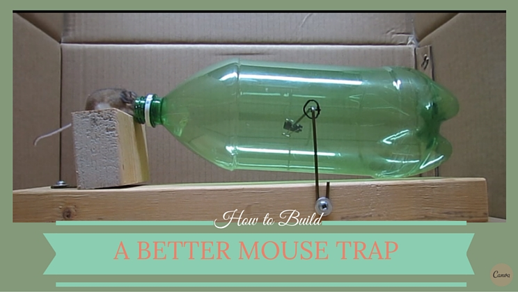 how to get rid of sticky residue from mouse trap